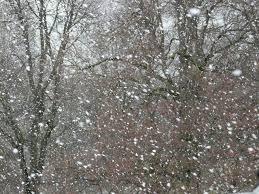 Nivel 1 de Emergencia en Albacete por previsión de fuertes nevadas