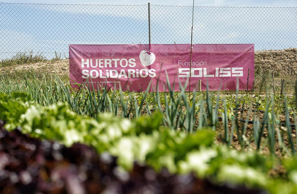 Los huertos solidarios de la Fundación Soliss se encuentran a pleno rendimiento para ayudar a abastecer a los más necesitados